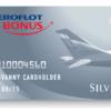 Условия и порядок получения серебряной карты «Аэрофлот Бонус», какие привилегии предоставляет